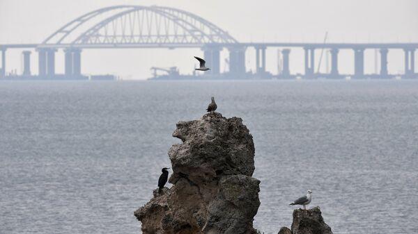 Вид на строящийся Крымский мост. Архивное фото