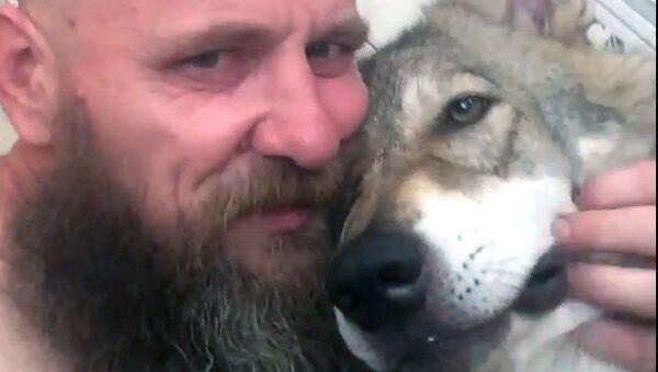 Иван Лебедев  с волчонком, которого он забрал с фермеры в Астраханской области