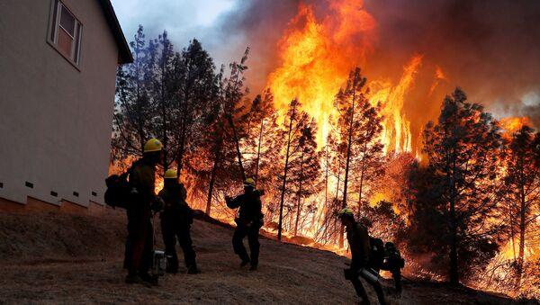 Лесной пожар в Калифорнии. 8 ноября 2018