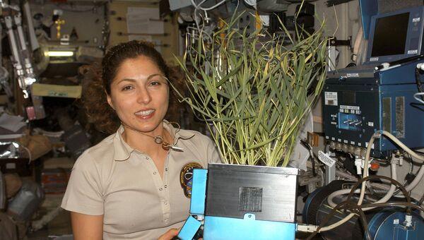 Иранский астронавт Ануше Ансари на борту МКС