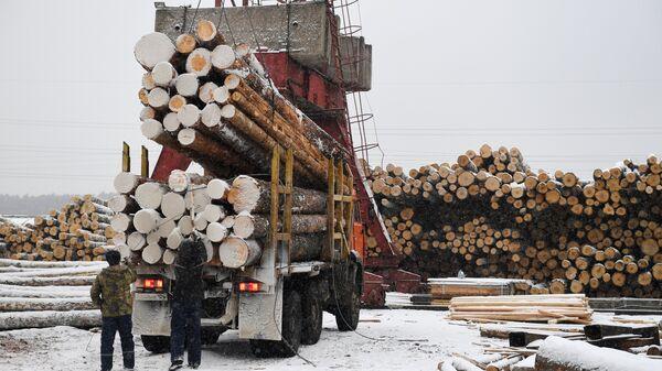 Разгрузка лесовоза на частном лесоперерабатывающем предприятии в городе Канск Красноярского края