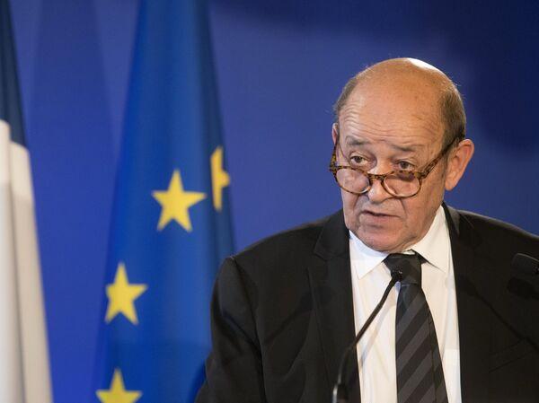 Министр иностранных дел Франции Жан-Ив Ле Дриан во время совместной пресс-конференции с министром иностранных дел РФ Сергеем Лавровым в Париже