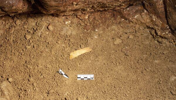 Фрагмент палеолитической диадемы в раскопе южной галереи Денисовой пещеры
