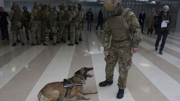 Пограничник в аэропорту Борисполь