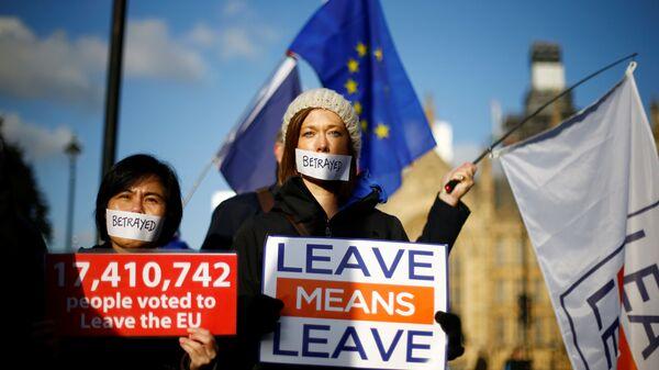 Сторонники Brexit у Вестминстерского дворца в Лондоне. 12 декабря 2018
