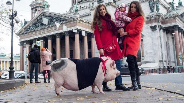 Елизавета Родина с дочерью и домашней свинкой