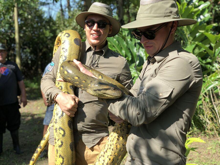 Перу, встреча со змеей на реке Амазонка