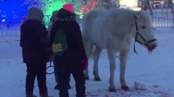 Скриншот с видео Станислава Андреева.