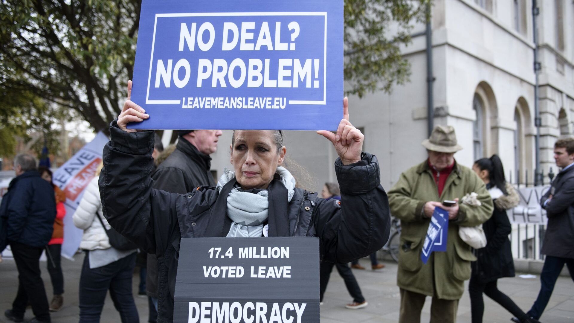 Участница акции против Brexit у здания парламента Великобритании в Лондоне. 15 января 2019 - РИА Новости, 1920, 07.12.2020