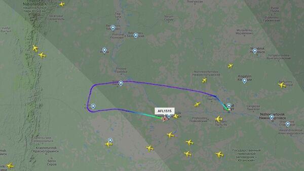Пассажир рейса Сургут—Москва задержан после попытки угона самолета в Афганистан