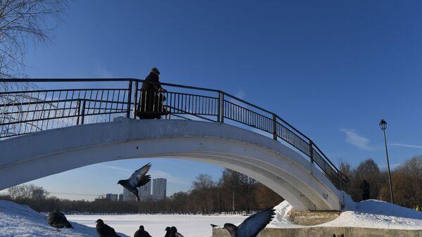 Женщина на мосту в одном из паркев Москвы
