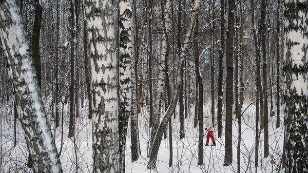 Женщина катается на лыжах в лесу
