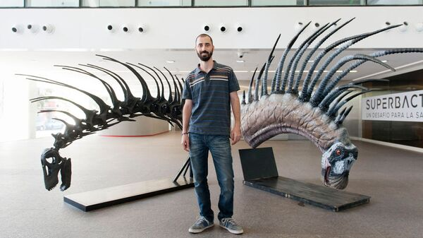 Сотрудник CONICET Пабло Галлина на фоне реконструкции скелета зауропода — Bajadasaurus pronuspinax