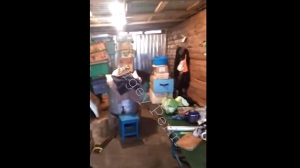 Автор видео о Цеповязе выложил вторую серию о его усадьбе в колонии