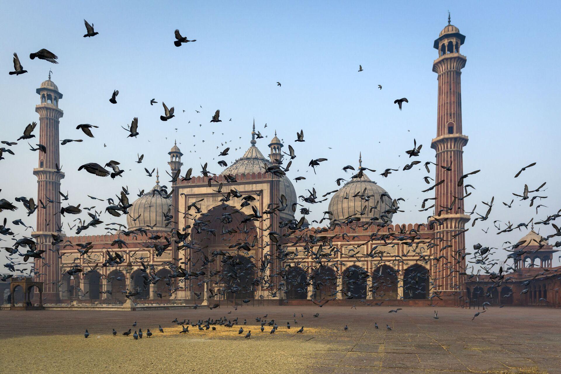 Мечеть Джама Масджид в Дели - ПРОФИ Новости, 1920, 19.01.2021