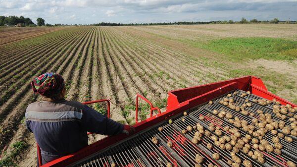 Работница фермерского хозяйства
