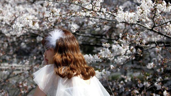 Девушка возле цветущей сакуры в Токио, Япония
