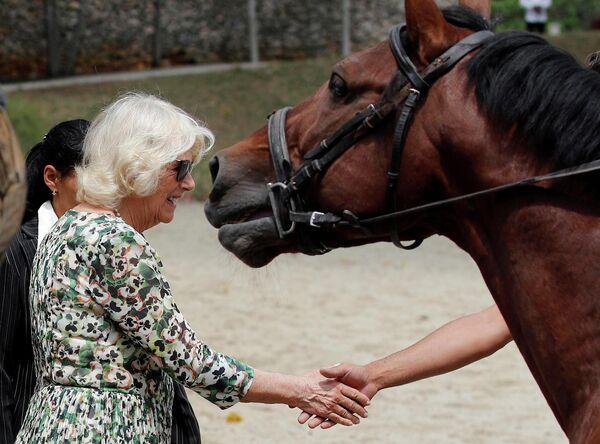Камилла, герцогиня Корнуольская, во время посещения Национального конного центра в Гаване, Куба