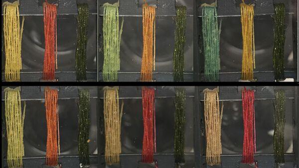 Нити, меняющие свой цвет при появлении аммиака (сверху) и паров соляной кислоты (снизу)