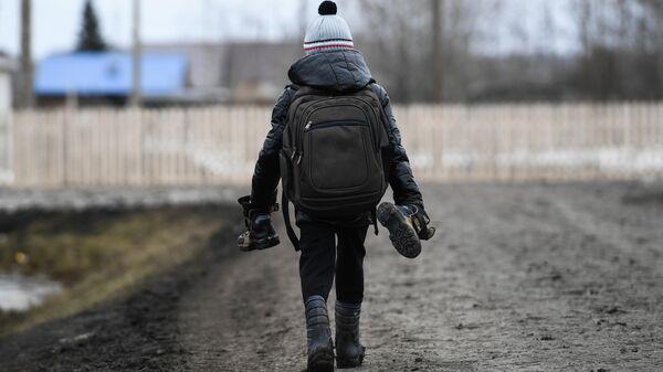 Мальчик идет в школу в деревне Аполлоновка