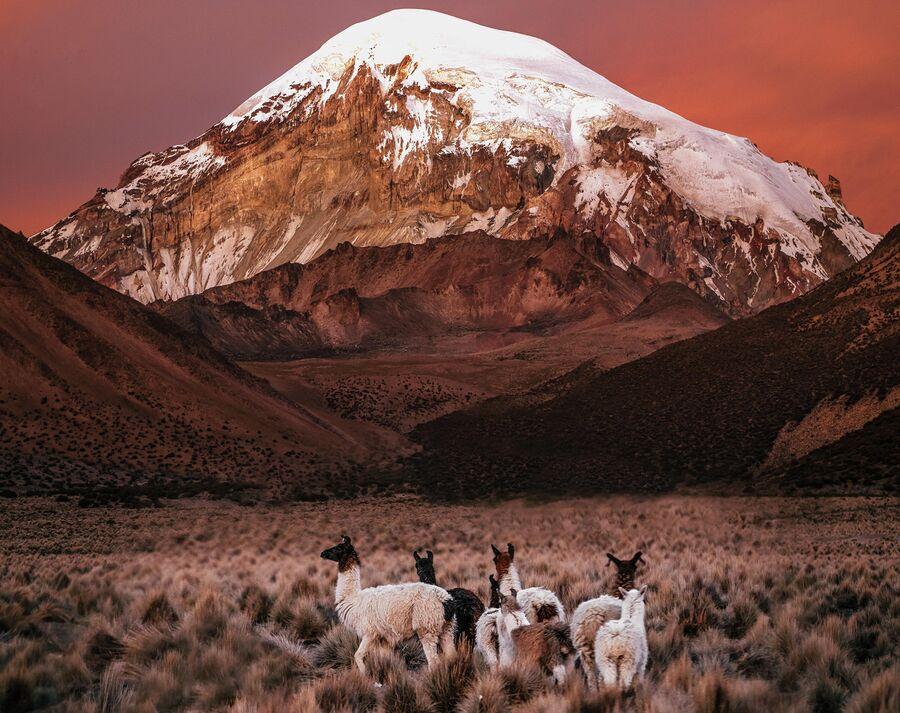 Боливия. Закат в национальном парке Sajama