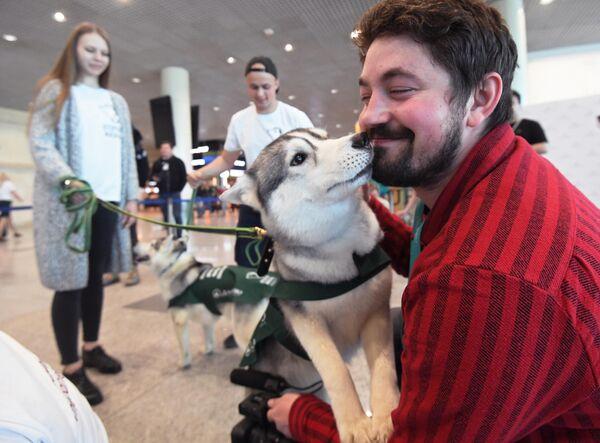 Мужчина обнимается с собакой в аэропорту Домодедово