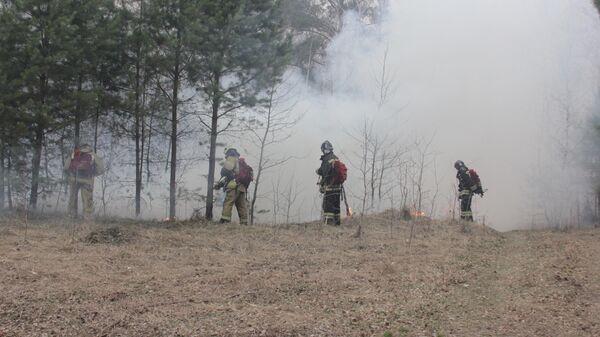 Тушение огня в Кетовском районе Курганской области. 4 мая 2019