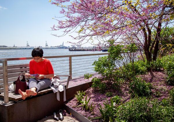 Женщина обедает на набережной возле Бэттире-парк в Нью-Йорке