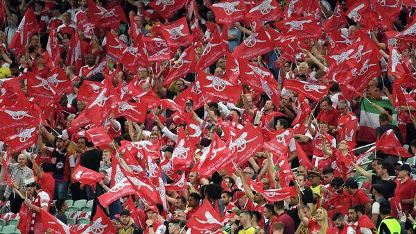 Болельщики лондонского футбольного клуба Арсенал