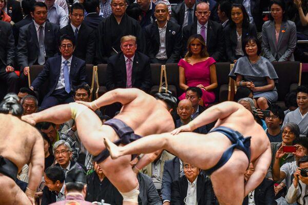 Президента США Дональд Трамп на турнире по сумо в Токио
