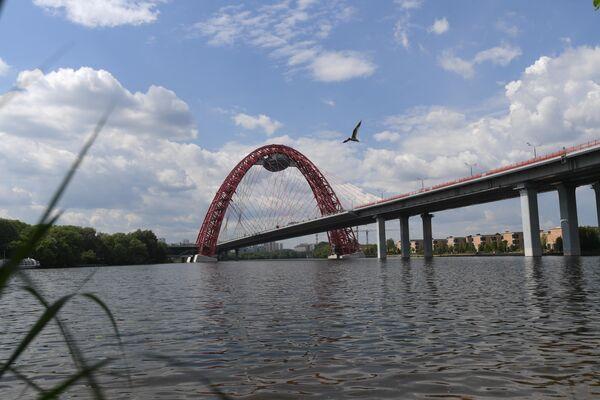 Москва-река и Живописный мост у станции Жуково-2