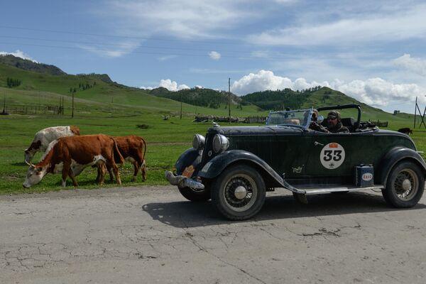 Участники международного ралли на старинных автомобилях Пекин - Париж 2019 автомобильной дороге в Республике Алтай на автомобиле Dodge Roadster (1933 г.)