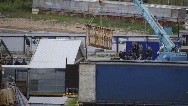 Перегрузка одной из косаток в грузовой автомобиль на причале в бухте Средняя в Приморском крае