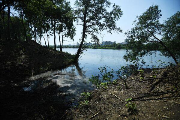 Берег Москвы-реки в московском районе Капотня