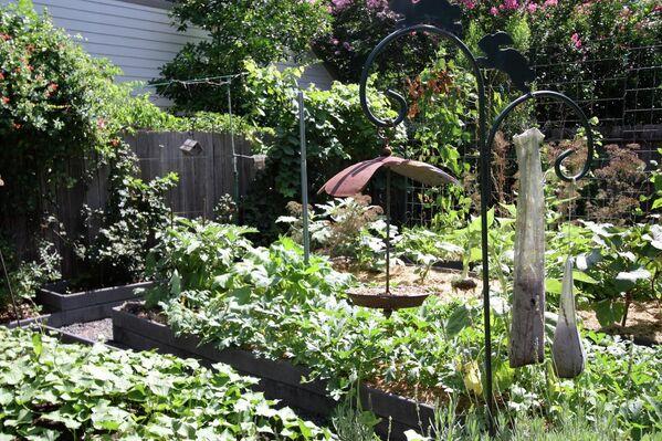 Огород с украшениями