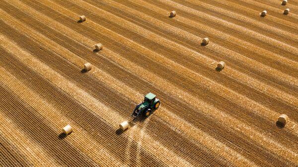 Заготовка рулонов сена на поле