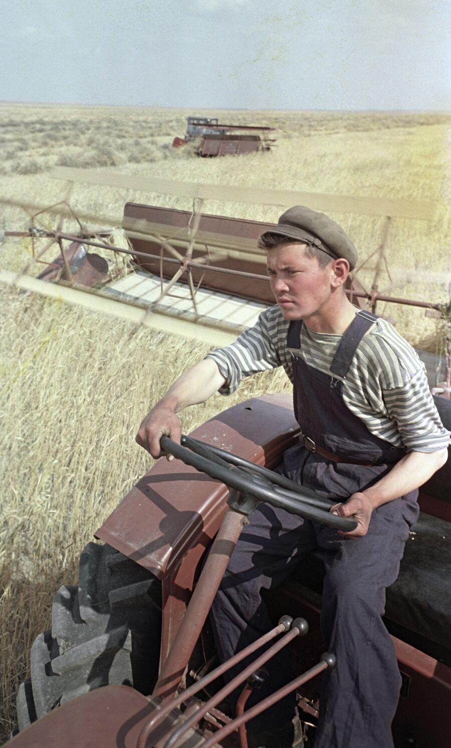 Тракторист целинного зерносовхоза ведет косовицу хлебов