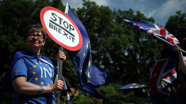 Противники Brexit у здания Парламента в Лондоне. 26 июня 2019