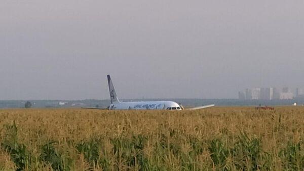 Появилось видео с места аварийной посадки А-321 в Жуковском
