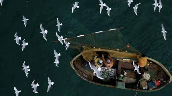 Рыбаки во время прибрежного лова черноморской рыбы