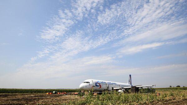 Самолет Airbus А321 авиакомпании Уральские авиалинии в кукурузном поле в районе деревни Рыбаки в Раменском районе Московской области