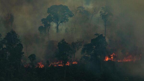 Горящий Амазонский лес  в муниципалитете Кандейас-ду-Джамари на северо-западе Бразилии