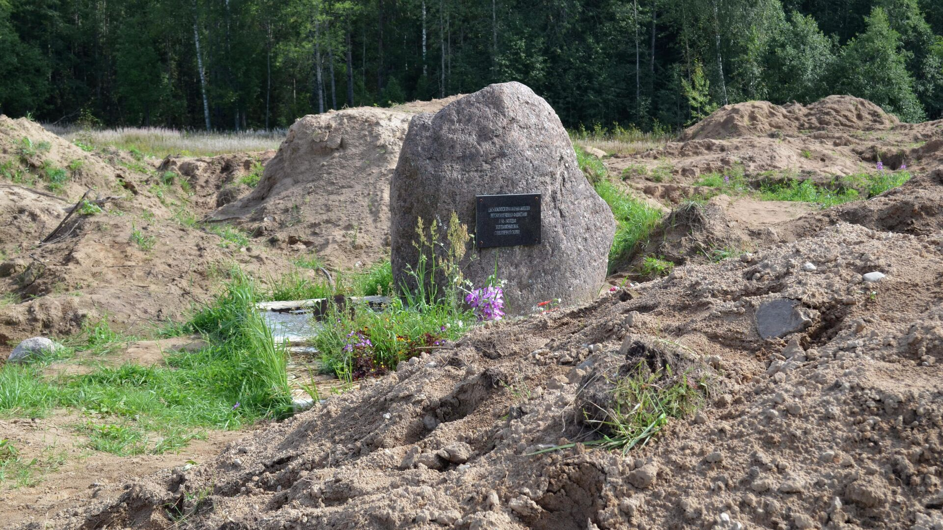 Место раскопок в районе деревни Жестяная Горка, где следователи обнаружили около 500 тел жертв латвийских карателей - РИА Новости, 1920, 14.10.2020