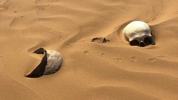 Археологические раскопки в пустынной зоне Северного Прикаспия на территории Астраханской области