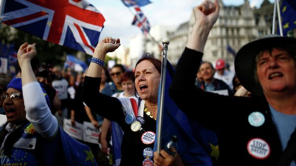 Участники акции против Brexit возле здания парламента в Лондоне