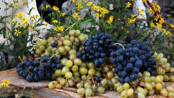 Виноградная фотозона на Празднике Винограда в Крыму