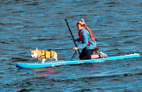 Участница заплыва Petshop Sup на сапсерфах с домашними животными в гавани торгово-развлекательного центра Питерлэнд в Санкт-Петербурге