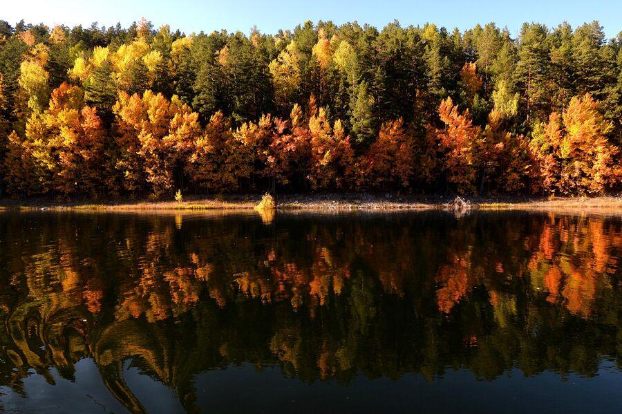 Осенняя сибирская тайга на берегу реки Енисей