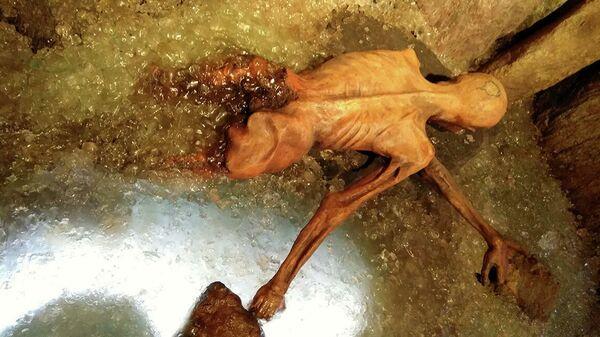 Этци (Отци) - ледяная мумия, найденная в Альпах в 1991 году