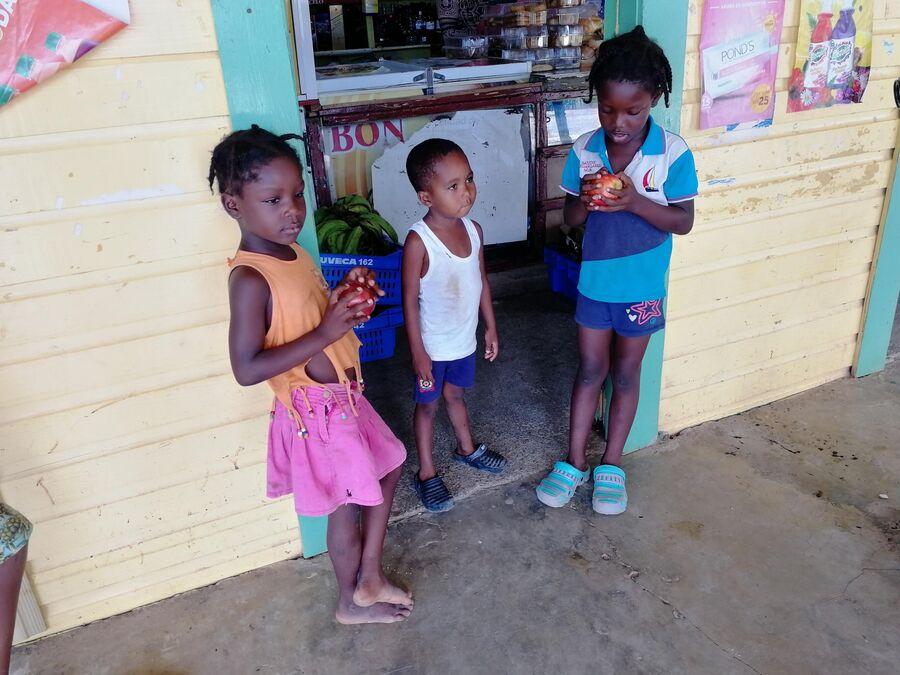Сафари в Доминикане